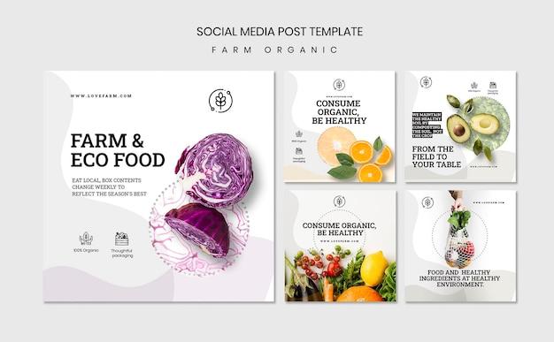 Farm organic social media post template Free Psd
