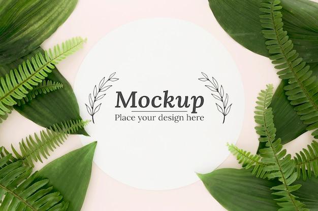 モックアップと緑の葉のフラットレイ構成 無料 Psd