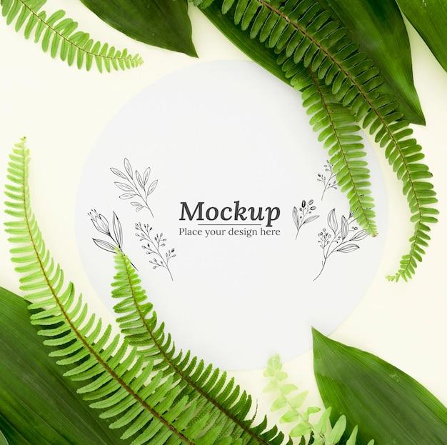 モックアップとフラットレイ緑の葉の配置 無料 Psd