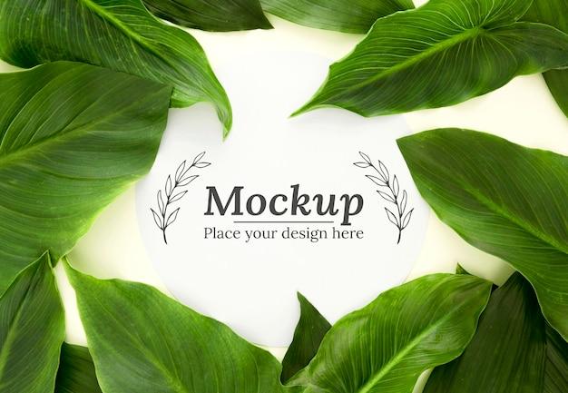 Assortimento di foglie verdi piatte con mock-up Psd Gratuite