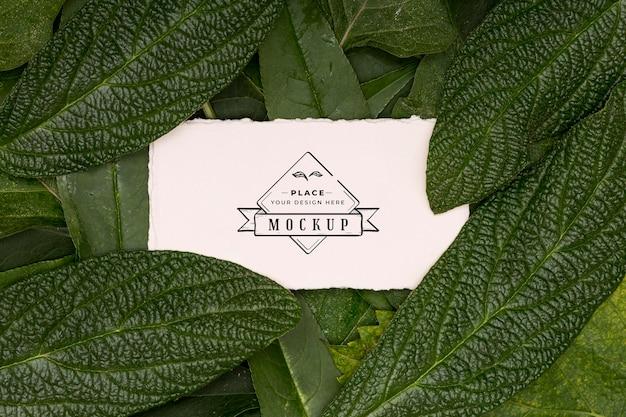 Mock-up del concetto di disposizione piatta delle foglie Psd Gratuite