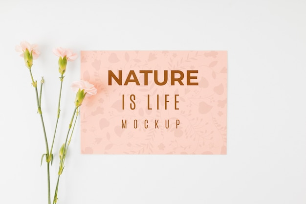 Плоский макет природы - цитата из жизни Premium Psd
