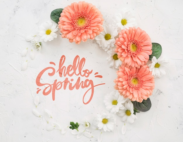 Flat lay of spring chamomile and daisies Free Psd