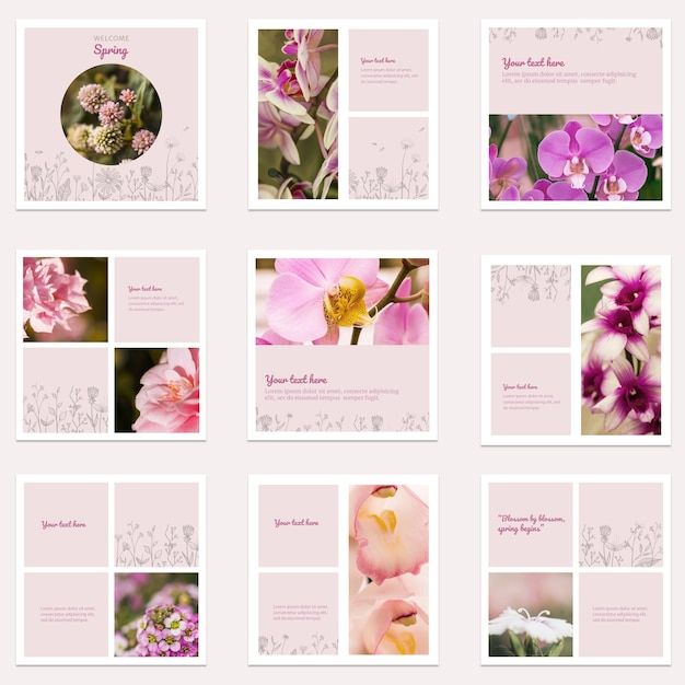Floral instagram post collection Free Psd