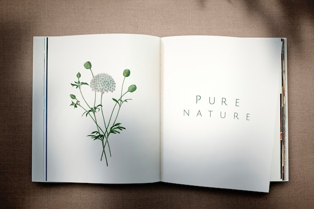 빈 공간을 가진 꽃 잡지 이랑 무료 PSD 파일