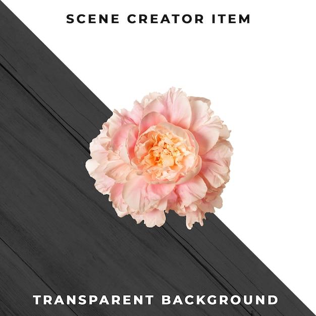 Цветочный объект прозрачный psd Premium Psd