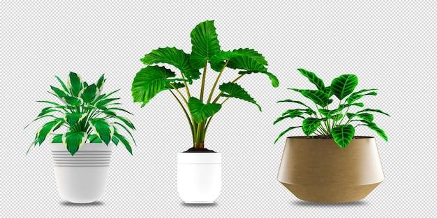 Цветы в вазе в 3d-рендеринге изолированные Premium Psd