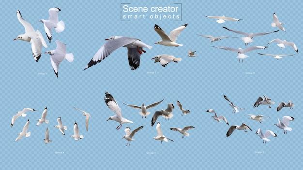 Flying birds scene creator isolated Premium Psd