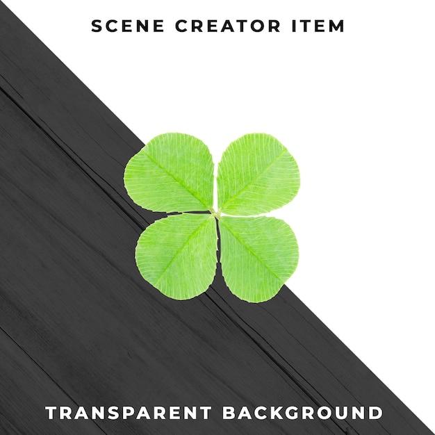 Four-leaf clover isolated with clipping path. Premium Psd