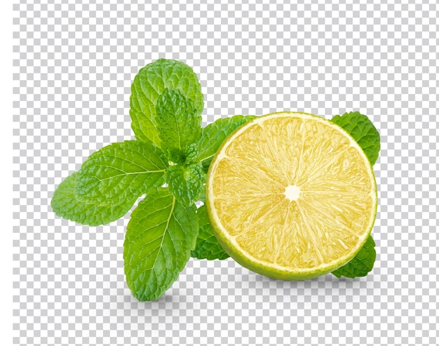 Fresh lime sliced with mint leaves isolated Premium Psd
