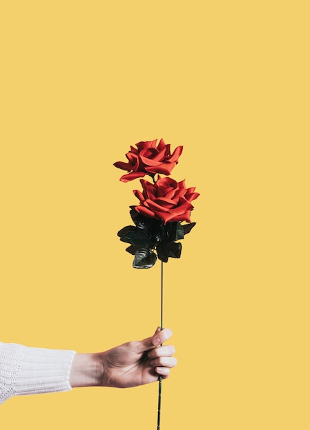 Giving a rose for valentines day Free Psd