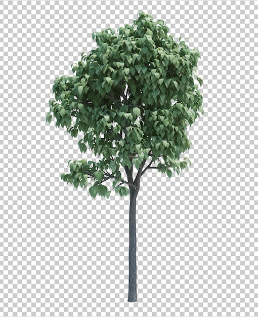 Gorgeously detailed tree isolated Premium Psd