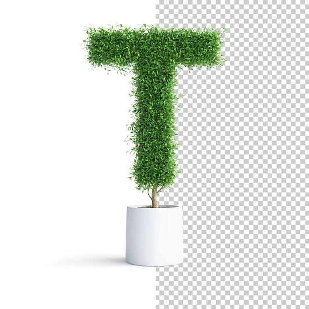 Письмо об алфавите зеленое дерево Premium Psd