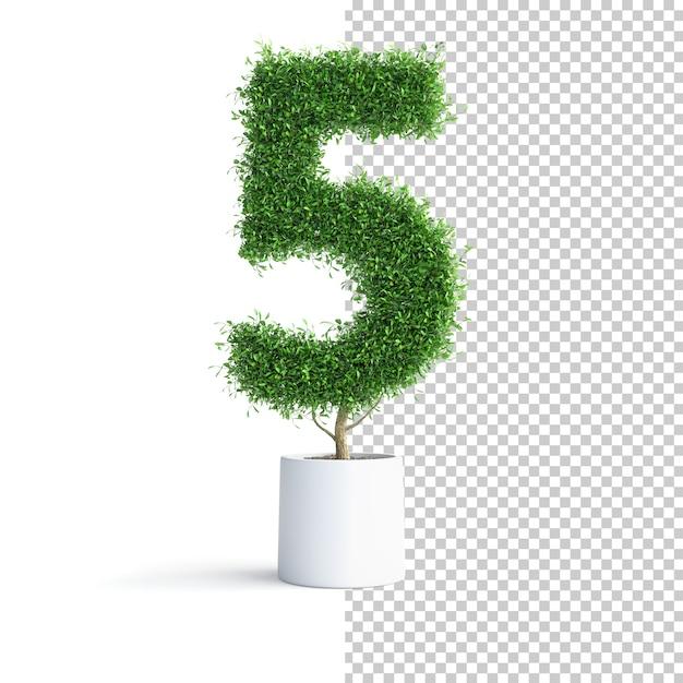 Зеленое дерево номер 5 Premium Psd
