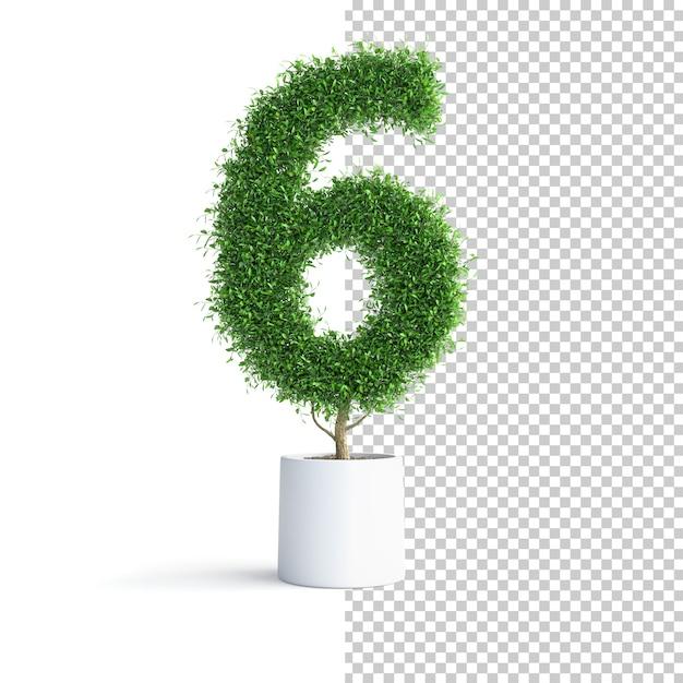 Зеленое дерево номер 6 Premium Psd