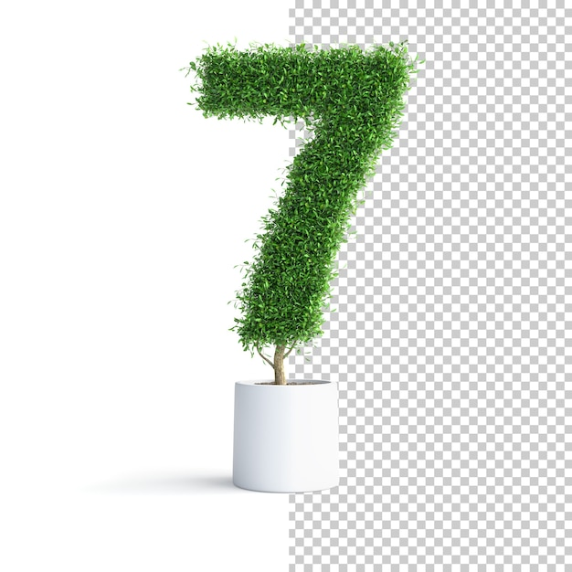 Зеленое дерево номер 7 Premium Psd