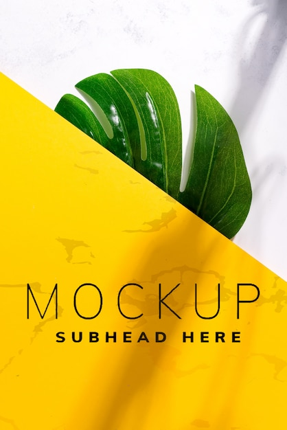 Green tropical monstera leaf on a duotone yellow white background with soft shadows. Premium Psd