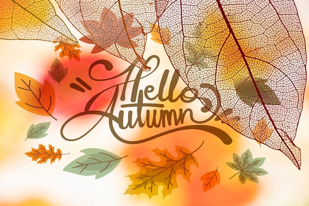 Hello autumn lettering with translucent leaves Free Psd