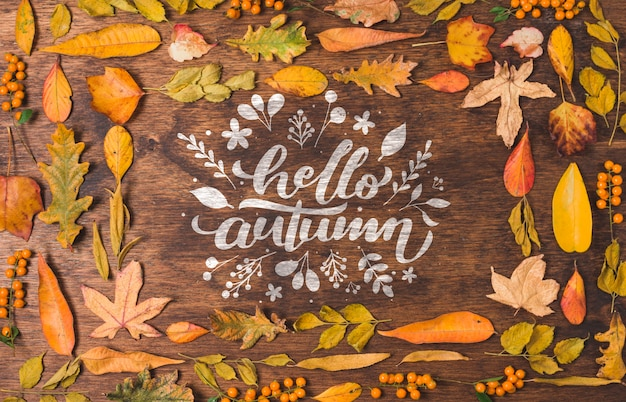 Hello autumn quote surrounded by dried leaves Free Psd
