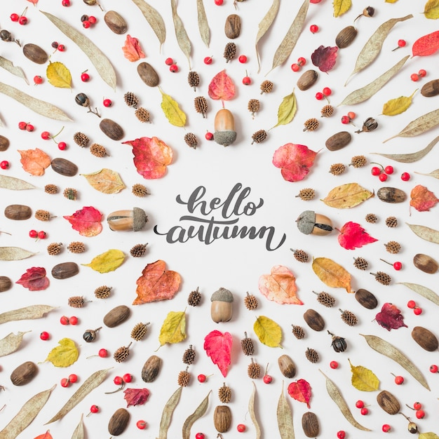 Hello autumn quote with dried leaves on white background Free Psd