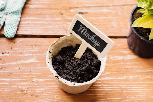High view plant in a pot mock-up Free Psd