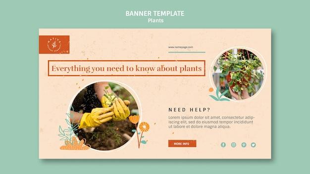 ホームインテリア植物バナーテンプレート 無料 Psd