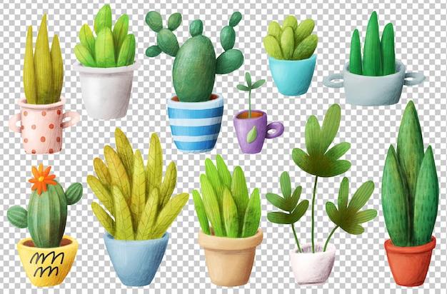 ホーム植物 Premium Psd