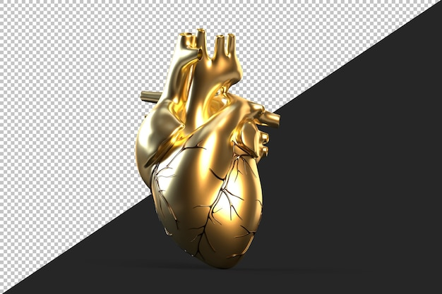 Illustration of golden human heart Premium Psd