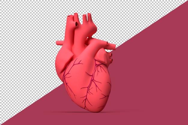 Illustration of realistic human heart Premium Psd