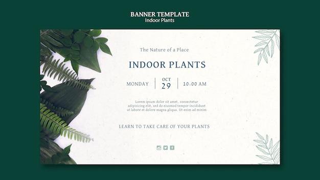Шаблон баннера для комнатных растений Бесплатные Psd