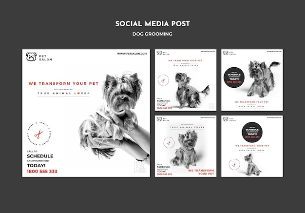 Instagram posts collection for pet grooming company Free Psd