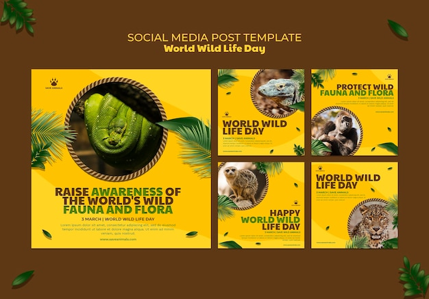 Instagram posts collection for world wildlife day with animals Free Psd