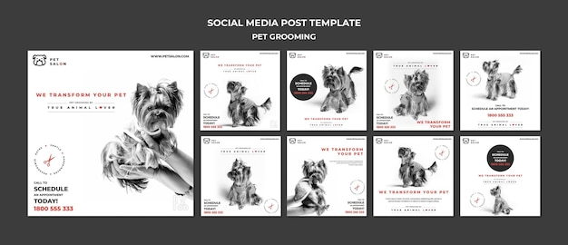 Instagram posts pack for pet grooming company Free Psd