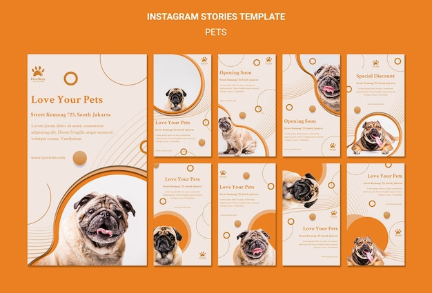 강아지와 함께 애완 동물 가게를위한 Instagram 이야기 모음 프리미엄 PSD 파일
