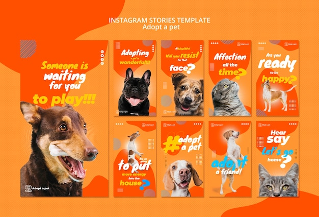 Instagram stories collection for pet adoption from shelter Free Psd