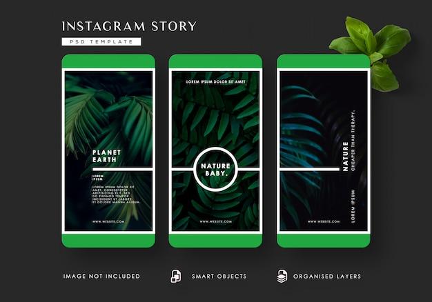 熱帯の葉instagramの物語テンプレート Premium Psd