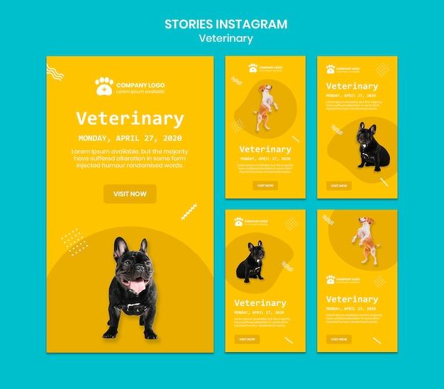 Ветеринарные истории instagram Бесплатные Psd