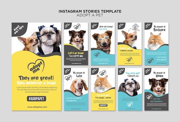 Принять шаблон истории питомца instagram Бесплатные Psd