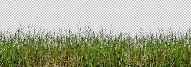 Isolated wild grasses Premium Psd