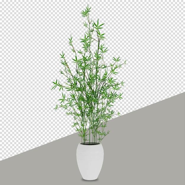 分離された3 dレンダリングで等尺性植物 Premium Psd