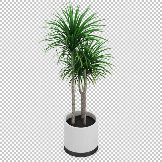 Isometric plant Premium Psd
