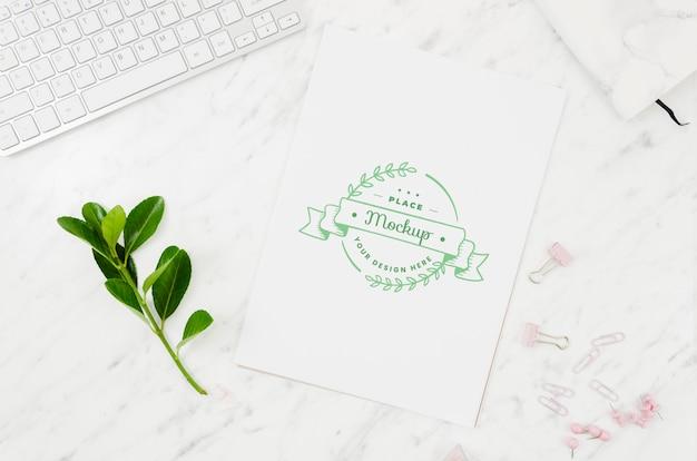 Листья и ботанический макет на мраморном фоне Бесплатные Psd