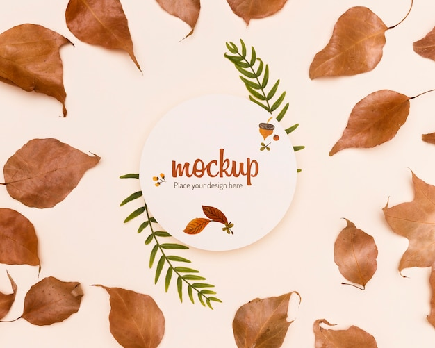 Leaves arrangement autumnal mock-up style Free Psd
