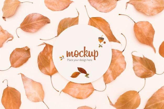 Leaves composition autumnal mock-up design Free Psd