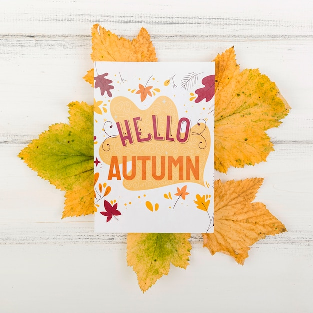 Leaves with hello autumn season message Free Psd