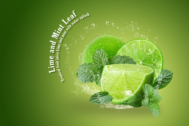 Lime and mint with water splash isolated on green background Premium Psd