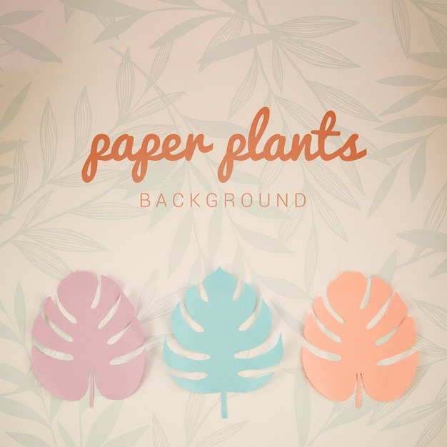Монстера бумажных растений фон вид сверху Бесплатные Psd