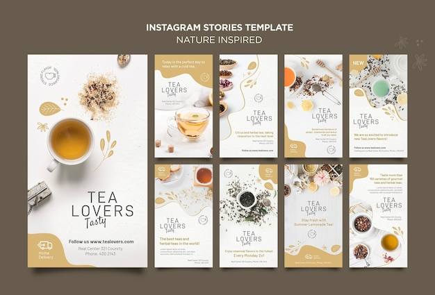Storie di instagram ispirate alla natura Psd Gratuite