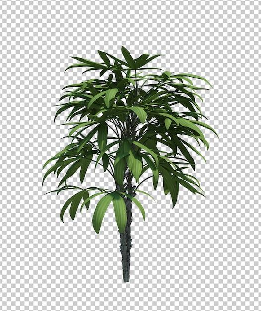 Природа объекта куста дерева, изолированных на белом фоне Premium Psd