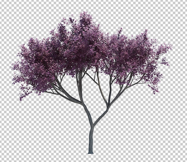 Nature object tree isolated white Premium Psd